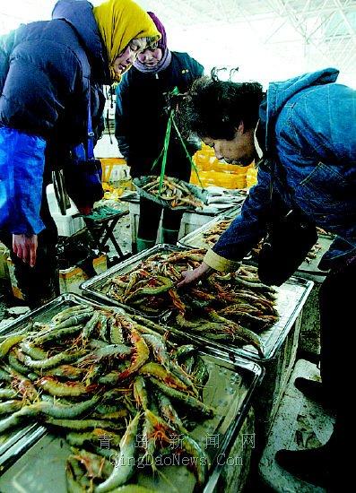 青岛城阳市场日进海鲜两千吨